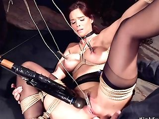 Cougar Servant Is Buggered Made Love In Training