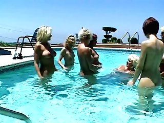 Hot And Horny Lesbos Get Faux-cock And Share Sucking It