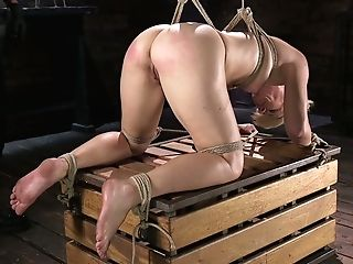 Tied Up Blonde Helena Locke Gets Her Tits And Fuckbox Penalized