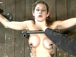 Buxomy Blonde Mom Opened Up And Strapped Gets Whipped And Tormented...